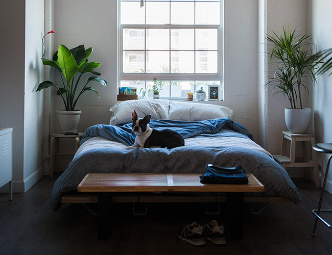 дизайн-спальни-фото