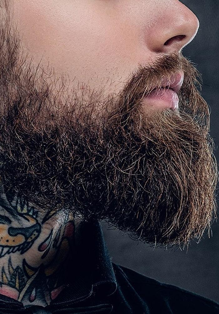 форма бороды утиный хвост