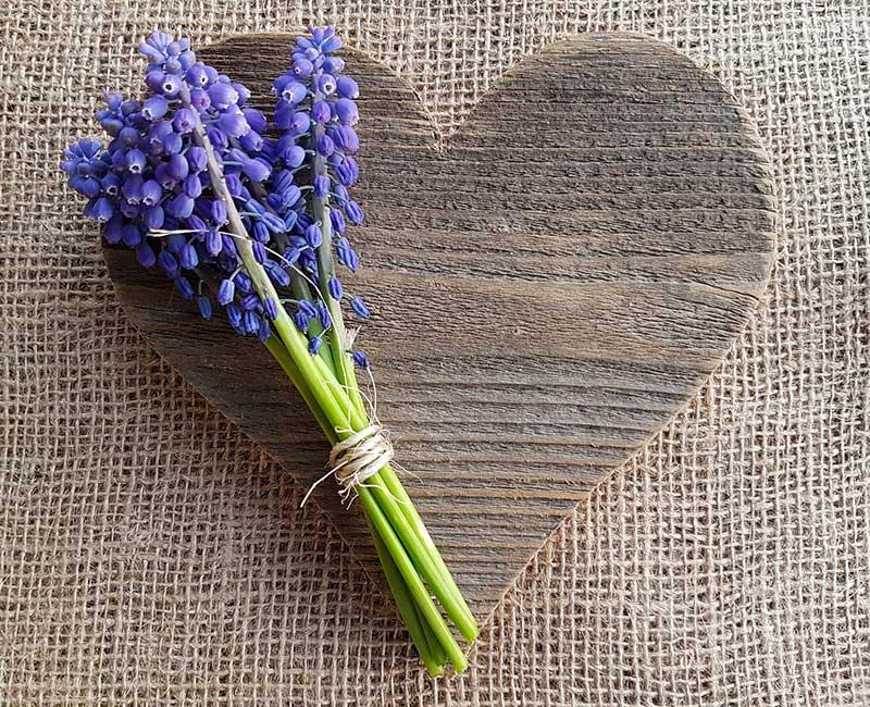 день святого валентина день всех влюбленных