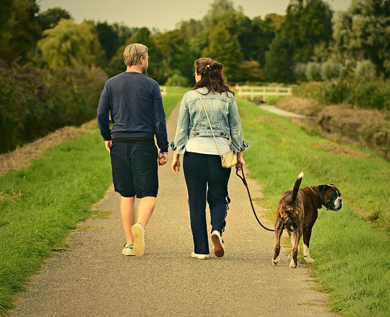 как укрепить иммунитет прогулка